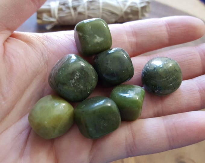 Serpentine ~ 1 small/medium Reiki infused tumbled crystal approx .5-.75 inches