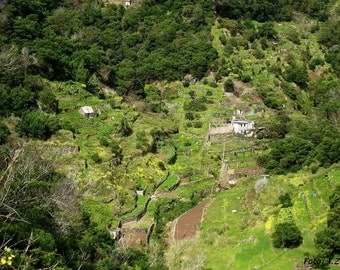 Green Valley, Country Side, Madeira, Portugal, Digital Download, Landscape Photo
