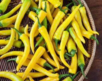 VPPHC) GOLDEN CAYENNE Hot Pepper~Seeds!!!~~~~Wonderful Flavor!