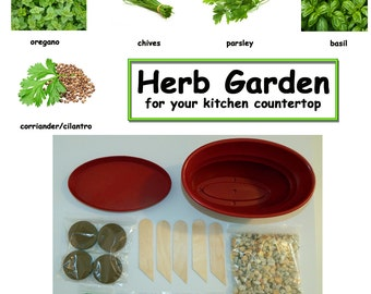 Countertop Herb Garden Kit : herb kitchen garden kit everything needed for growing countertop herbs ...