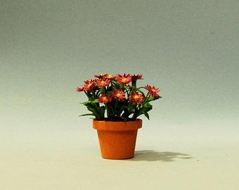 1 inch scale miniature-Aster