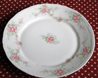 Antique  Plates by Oberpfaltz China.  Tiny Pink Roses and Leaves Pattern. Six Fine Bavarian Porcelain Plates. European Porcelain Plates.