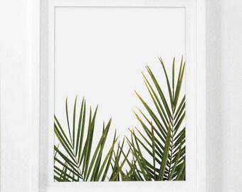 Tropical Leaf Print, Green Palm Art, Palm Art, Palm Leaves, Art Green, Tropical Prints, Palm Leaf Prints, Tropical Decor, Green, Framed