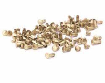 Brass Rivet Assortment for RIVET TOOL (100pcs)(ccbr1000)