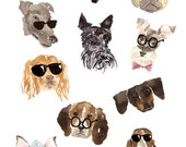 Dogs and their accessories