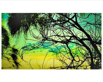 Large Art Print - Limited Edition Photography