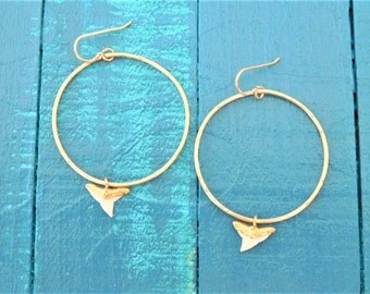 Gold Shark Tooth Earrings, White Shark Tooth Earrings, Gold Dipped Shark Tooth Hoops, Shark Tooth Charm Earrings, Real Shark Tooth Earrings