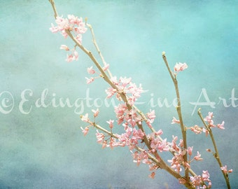 Cherry Blossom photo, Flower photography, nature decor, nature photography, flower photo, spring decor, wall art, blue, pink, botanical art