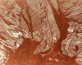 Forest woodland linocut art print - Plompton Rocks