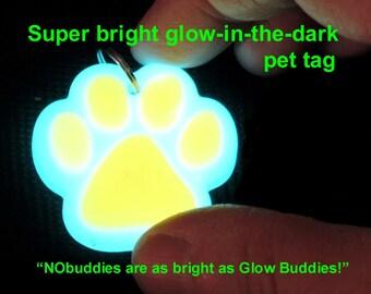 Glow in the dark pet tags