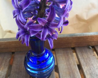 Cobalt blue glass vase -