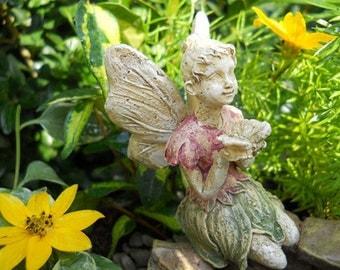 Fairy Garden  - Rachael - Miniature