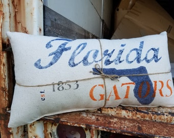 Hometown Florida Gators Pillow