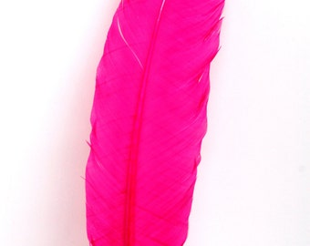 5 Pcs Turkey Quills - HOT PINK Feathers