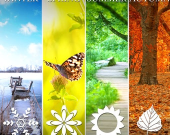 FULL YEAR AHEAD Tarot Reading 12 Months Psychic Reading Accurate Predictions Same Day by Email