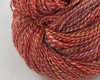 Coral Reef - Sport weight hand spun yarn - Merino/BFL/Alpaca/Stellina,