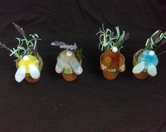 Curious Bunny -Easter
