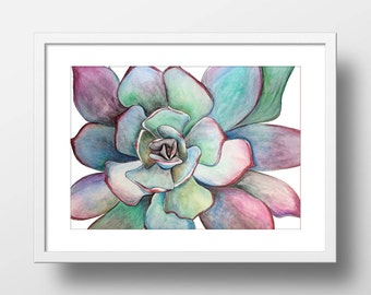 Succulent Painting. Original Print. Floral Wall Art. Succulent Art. Watercolor Print. Floral Art. Succulent Plant.