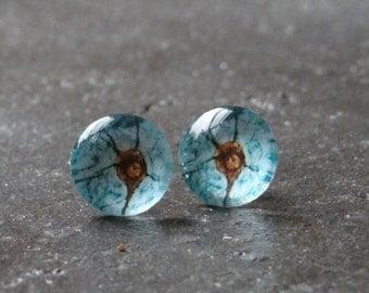 Neuron stud earrings
