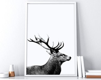 Printable Deer Head| Deer Antler Decor| Deer Print| Scandinavian Printable Art| Extra Large Wall Art | Nordic Wall Decor | Minimalist Poster