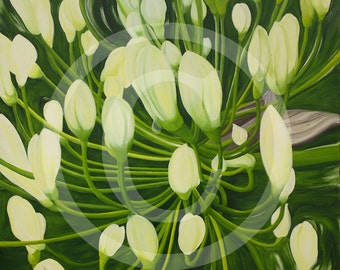 Agapanthus, Blue Lily, print on canvas, 100 x 100 cm