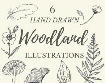 Hand Drawn Woodland Illustrations- 9 flower clipart line drawings, flowers, leaves, mushroom, fern, plants, botanical, rustic, romantic