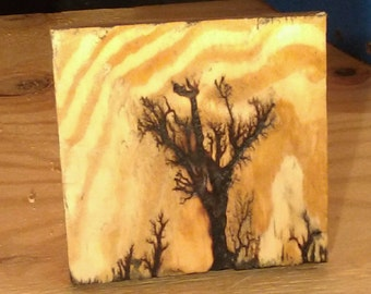 Burnt Tree using electricity, 5 and a half inch sqaure