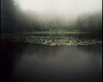 Norway Print, Lake Photography, Giclee Print, Analog, Dark, Landscape Photo, Large Scale, Misty Lake, Forest, Scandinavian Nature, Bergen
