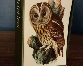 sale - The Tawny Owl - blank cards, boxed set