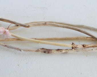 Set of 5 Skinny Driftwood Branches,  Surf Tumbled Beach House Decor , natural vase filler Try Me Price TMS5