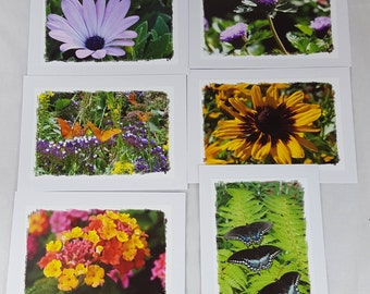 Flowers and butterflies photo cards