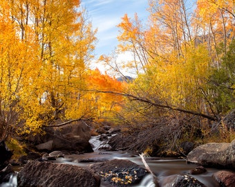 Fall  Photography Mountains Photography  Autumn Photography Creek Stream Water home decor  Fine Art Photography Print