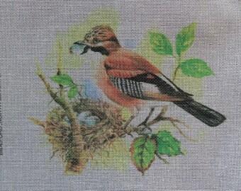 Rare A & S DEIGHTON Bird JAY Handpainted Needlepoint Canvas Hand Painted - Bideford North Devon England