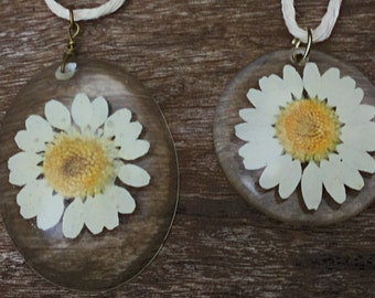 Preserved Daisy Resin Dome Pendant Necklace