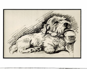 Antique MATTED Dog Print, 1930s Terrier Lucy Dawson, 5x7 Mounted Print Puppy Print, black & white Wall Decor, Home Interior Design, B-5