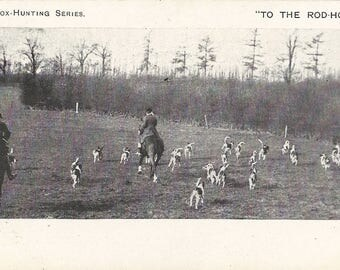 To the Rod-Holt - Antique 1900s Photographic Foxhunting Huntsmen, Horses and Hounds Postcard