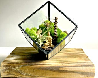 Geometric Zen air plant terrarium  with gold buddha - Living decor DIY kit - gift for any occasion- Buddha zen decor and reclaimed wood base