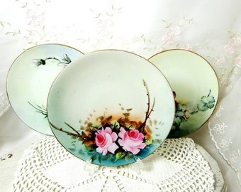 Vintage Collectible Plates, Hand Painted with Roses, Daisies, and Grapes, Gotham Austria // EPIAG Pirkenhammer // RK