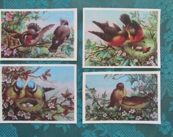 Set of 4 fabric prints with birds and nests, great to use for Crazy Quilting, fabric postcards, journals and tags