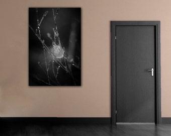 Gothic Black & White Spider Web Photography, Ethereal Macro Photograph, Monochrome Vertical Wall Art, Fine Art Cob Web Photo Print