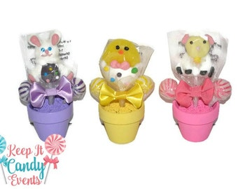 Easter Character Mini Lollipop Arrangement, Easter Gift, Easter Candy, Lollipop, Candy, Easter Bunny, Boy, Girl, Gift, Easter Basket, Easter