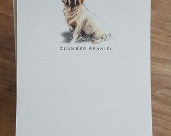 Clumber Spaniel Note Card Set