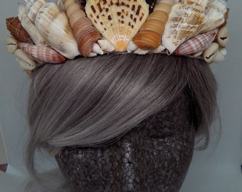 Natural Shell Crown