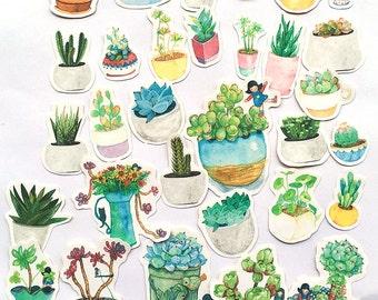 36 Pcs Succulents Sticker, Succulent Sticker Flakes, Potted Plants Filofax Stickers, Girl stickers, Cactus Sticker, Plant Stickers, Nature