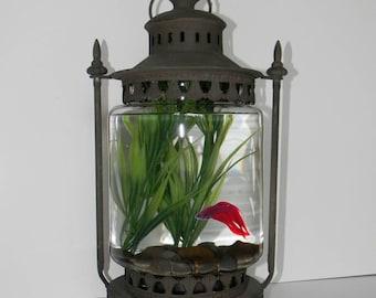 Charming Archaic Lantern Style Aquarium - Ideal for Betta Fish, Small Aquatic Plants. Tall Glass Flask - Apprx 1 Gal. - Unique Goldfish Bowl