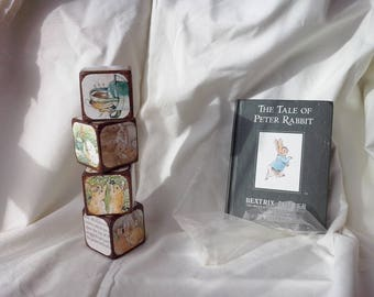 Peter Rabbit - Story Block Set