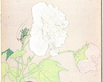 Japanese Ukiyoe, Original Sosaku Hanga, vintage, Tokuriki Tomikichiro.