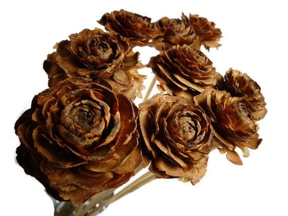 Cedar roses natural brown color pinecone roses floral for Natural rose colors
