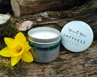 Spring Daffodil Scented Natural Soy Wax Handmade in Scotland Tin Candle