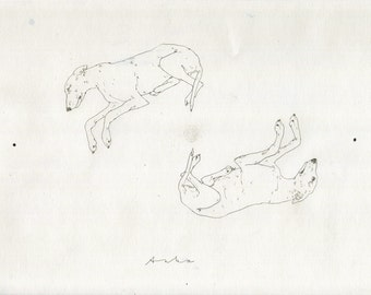 Drawing of 2 Whippets sleeping by Dogscanbark